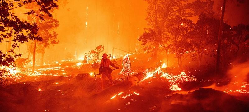 Google Maps будет показывать локации лесных пожаров по всему миру
