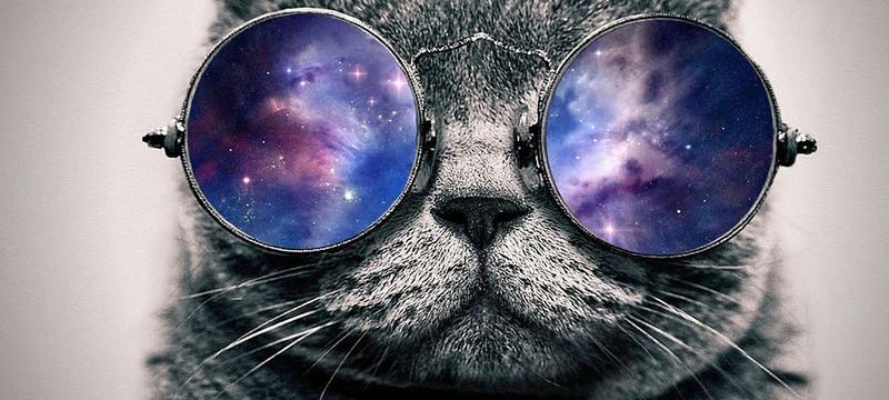 Star Citizen получит космических питомцев за $64 миллиона
