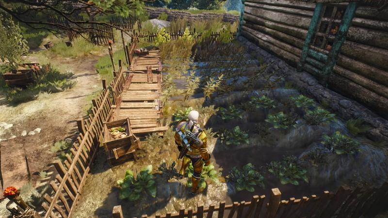 Как растительный мир и садоводство формируют лор The Witcher 3