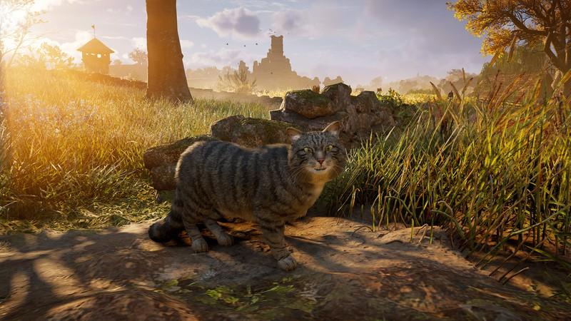 Посмотрите на этих гигантских котов из Assassin's Creed Valhalla — они превосходны